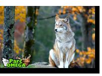 Parc Omega wildlife park